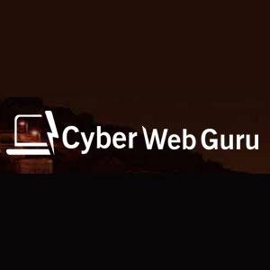 Cyber Web Guru