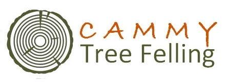 Cammy Tree Felling